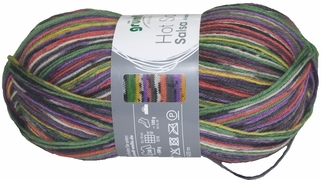 100g GERMAN Silky Self Striping SuperWash SOCK Yarn Salsa Grundl 02