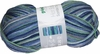 100g GERMAN Silky Self Striping SuperWash SOCK Yarn Samba Grundl 02