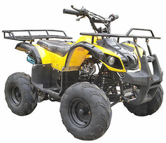 "Regency Mountain Cat 125-SU Sport/Utility ATV - 125cc Quad! -Oversize 16"" Tires! With Reverse!"