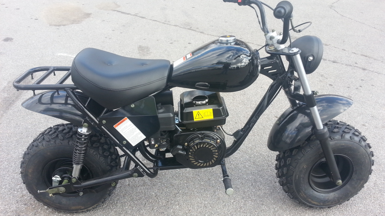 Adult Mini Bikes With Big Tires cc Off Road Mini Bike