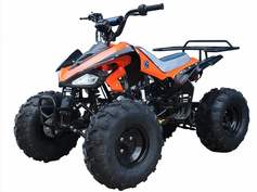 "VENTURE Deluxe XL 125cc Sport Quad - ATV - Over-Size 19"" Tires - Disc Brake - Rugged Suspension - Calif Legal"