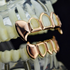 Rose Gold 4 Open Fang Set