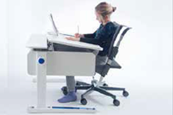 Moll Adjustable Desks
