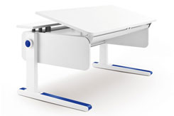 Moll Champion Adjustable Desk