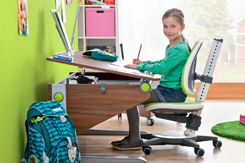 Moll Desks Available by Special Order