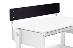 Two-Sided Back Panel for Champion Desk