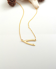Wishbone Necklace with Zirconia Crystal