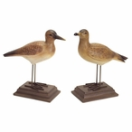 "10"" Coastal Birds on Stand Sculptures, Set of 2"