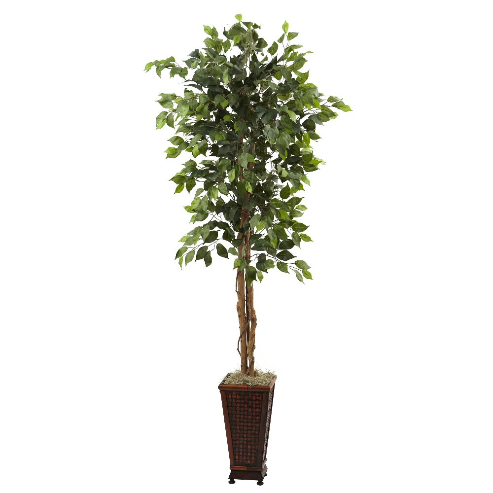65' Silk Ficus Tree With Decorative Planter  Artificial. Custom Kitchen Designs Pictures. Italian Designer Kitchen. Kitchen Design App Free. Kitchen Counter Designs. Kitchen Laundry Room Design. Loft Kitchen Design Ideas. Small Kitchen Cabinets Design. Design Your Own Kitchen Layout Free Online
