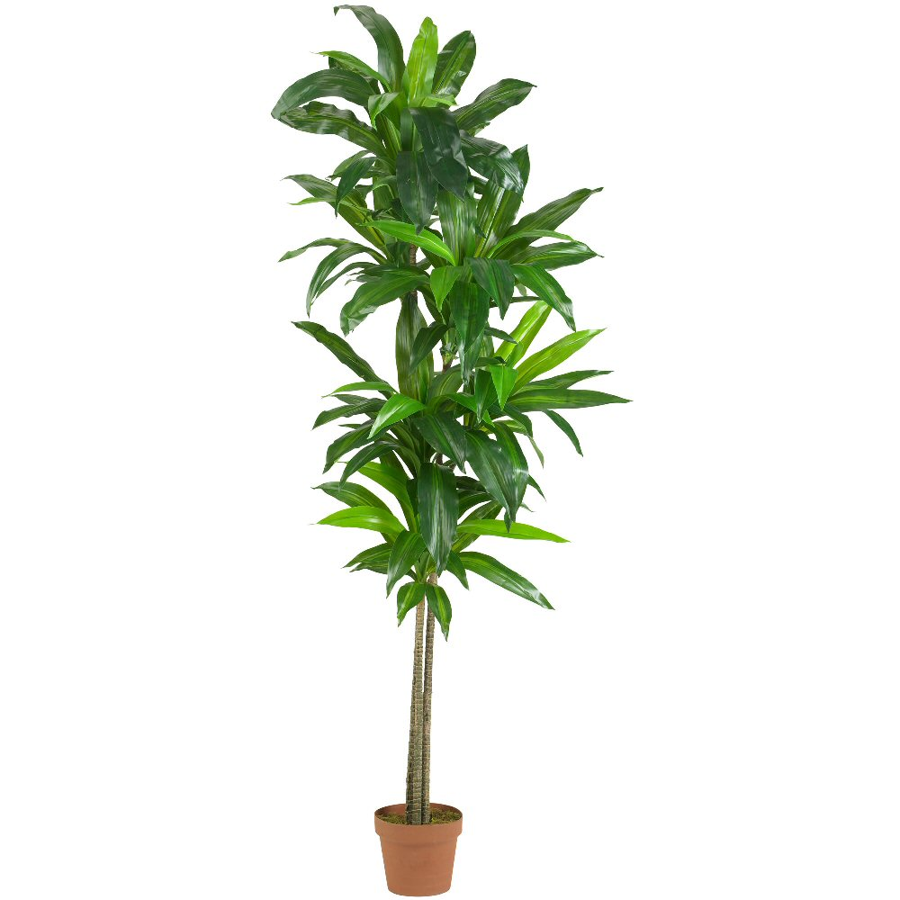 6 Real Touch Dracaena Silk Plant Artificial Plants
