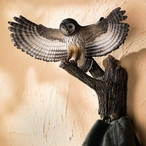 Barred Owl Birds Sculpted Hand Painted Single Wall Hooks, Set of 2