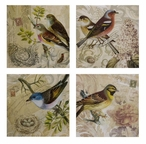 Kincaid Bird Wall Art Canvases, Set of 4