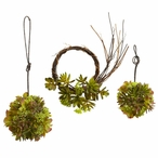 Mixed Succulent Wreath & Spheres, Set of 3