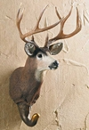 Mule Deer Hand Painted Sculpted Single Wall Hooks, Set of 3