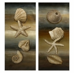Westport Assorted Shells Still Life Oil Paintings, Set of 2