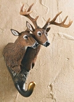 Whitetail Deer Pair Hand Painted Sculpted Single Wall Hooks, Set of 3