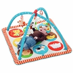 Skip Hop Funky Farmyard Activity Gym