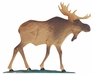 "Whitehall 30"" Traditional Directions Life-Like MultiColor MOOSE Weathervane for Roof or Garden"