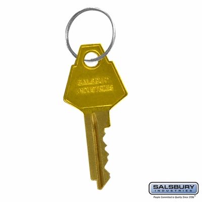 Salsbury 2098 Additional Key For Brass Mailboxes