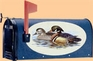 Bacova Gardens Wood Duck Oval Mailbox
