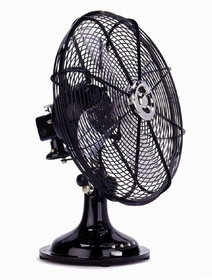 Electric Fan-Black-Large-3 speed-oscillating