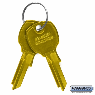 Salsbury 3399 Key Blanks For Standard Locks Of CBU Mailbox USPS Approved Box Of (50)