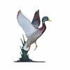 Whitehall Life-Like Multi-Color Duck Mailbox Ornament