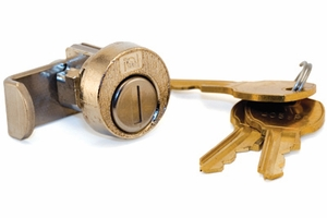 Lock Cylinder w/ Cam and 2 Keys (1000 Key Changes)