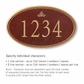Salsbury 1432MGIS Signature Series Address Plaque
