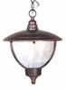 Vista Medium Chain Pendant Lighting Fixture
