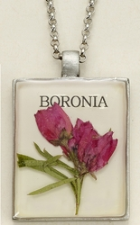 Boronia Seed Pack Pendant Necklace
