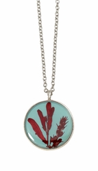 Scarlet Gilia on Robin Small Round Necklace