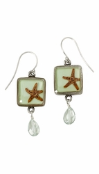 Starfish on Aqua SM Square Earrings w/Drop