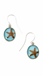 Starfish OT Small Round Earrings