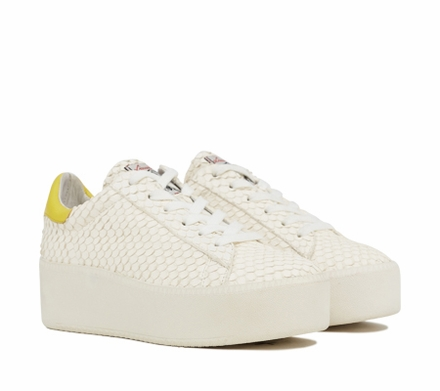 Ash Cult Womens Lace Up  Sneaker Offwhite Python Print and Yellow Leather 350013 (150)