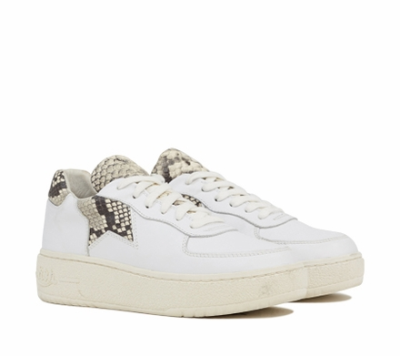 Ash Fool Womens Lace Up  Sneaker White Roccia Snake Leather 350028  (118)