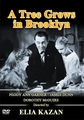 A Tree Grows in Brooklyn 1945 (DVD)