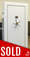 Fort Knox Protector 6031 Gun Safe (New old stock)