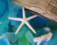 Sea Glass Decor