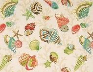 Seashell Shower Curtain St Barts