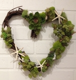 Succulent and Starfish Heart