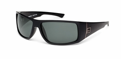 Quiksilver Transition Polar Sunglasses