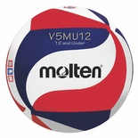 USAV Swirl Youth Volleylite