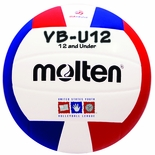 USAV Youth Volleylite