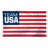 USOC Team USA Logo Flag