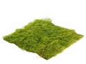 "1 Dozen - 14""x14"" Water Sphagnum Artificial Moss Sheets"