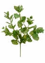 "1 dozen - 16"" Artificial Pepper Mint Leaf Bushes"