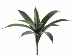 "25"" Artificial Sanseveria Succulent Plants - 1 Dozen"