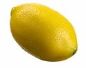 1 Dozen - 3 inch Realistic Weighted Artificial Lemons