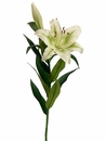 "1 dozen - 35"" Artificial Stargazer Lillies (Shown in Rubrum)"